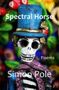 Spectral Horse Poems No. 3