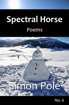 Spectral Horse Poems No. 6